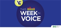 This Week In Voice (Season 3, Episode 15) with guest Elizabeth Robins (Best Innovation Group)